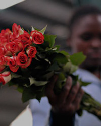 Competitiveness of the Kenyan Flower Industry